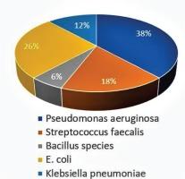 http://www.tobaccopreventioncessation.com/f/fulltexts/115064/TPC-6-11-g002_min.jpg